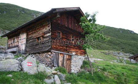 albero pietra sasso finestra legno alpi