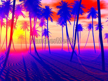 tramonto romantico riva del mare spiaggia